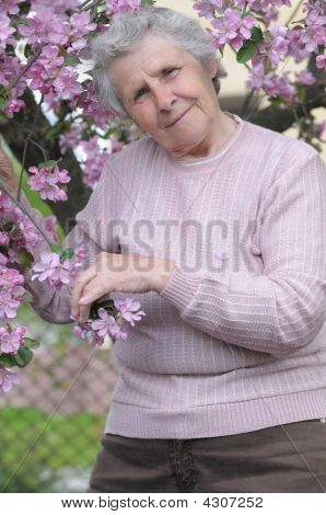 Happy Granny On Background Of Pink Flowers