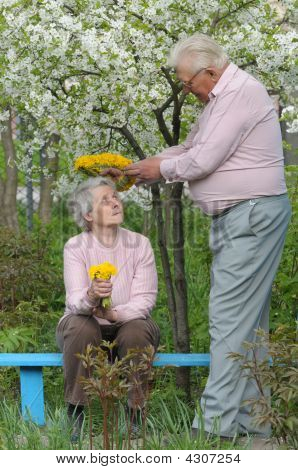 Happy Old Couple Against A Background Of Flowering Garden With Diadem Of Dandelions