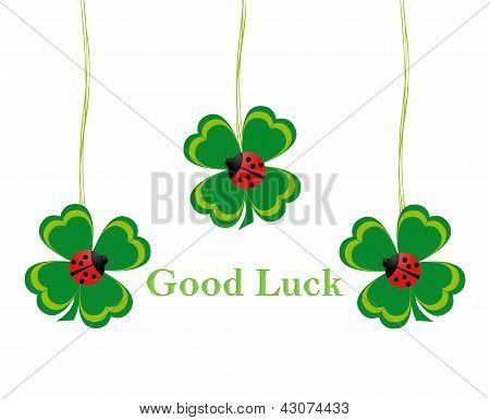 Four leaf clovers for Good Luck