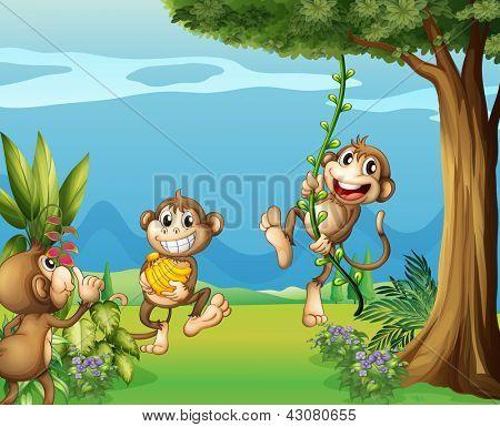 Ilustração dos três macacos em colinas