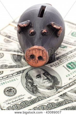 Money And Piggy Bank