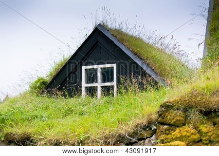 Overgrown Typical Rural Icelandic House Closeup