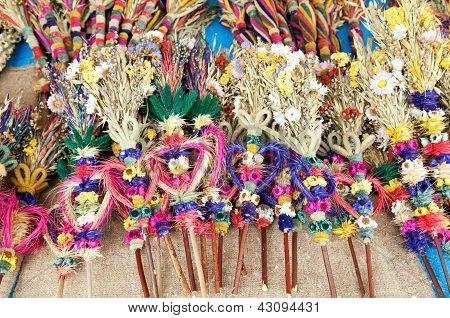 Dried Flowers Palms