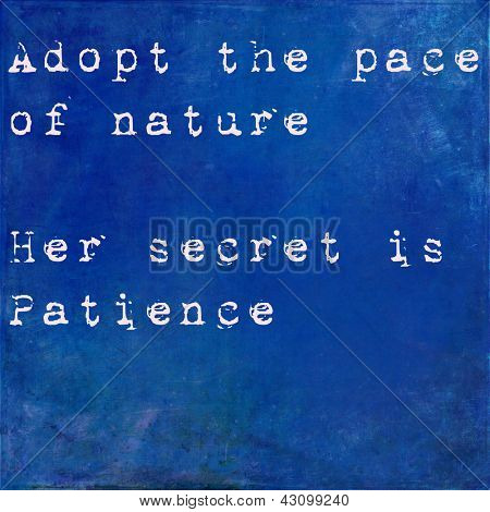 Inspirational quote by Ralph Waldo Emmerson on earthy blue background