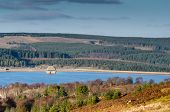 stock photo of square mile  - Kielder park has the largest man - JPG