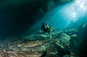 picture of cenote  - Diver in a cenote swim towards the opening - JPG