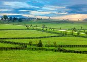stock photo of farm land  - Horse farm in Kentucky - JPG
