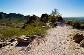 picture of piestewa  - Dirt Path Curving to the Right on Piestewa  - JPG