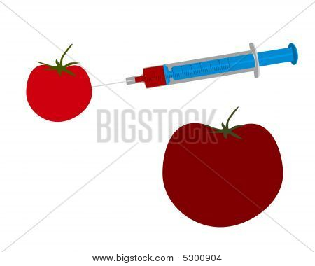 Illustration Of Genetic Engineering Of A Tomato