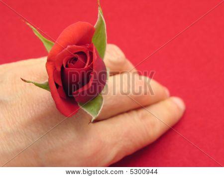 rote rose als Finger Emblazonment auf rotem Filz Hintergrund
