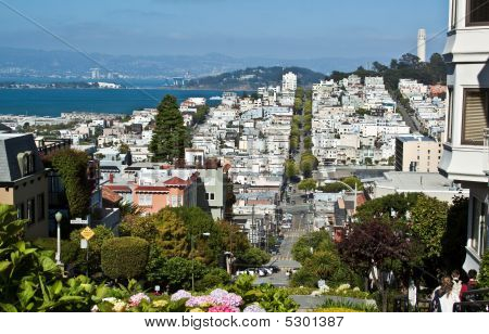 A View From Lombard Street