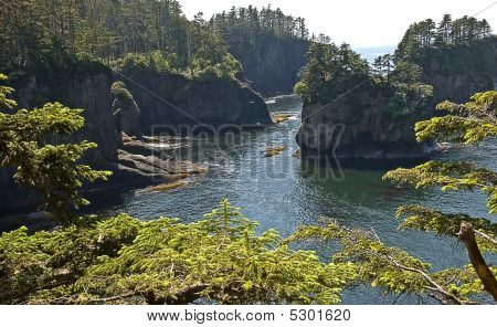 Cape Flattery Washington