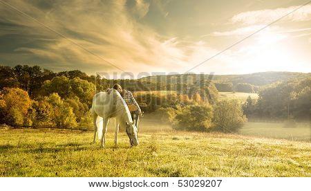 Beautiful sensual women with white horse