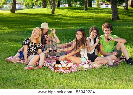 Friends Picnicking In The Park