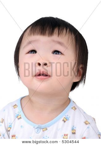 Baby lookup