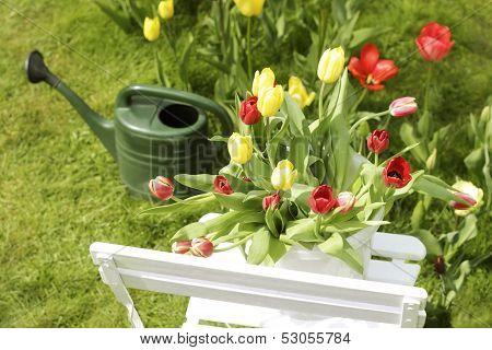 Spring Garden Motif
