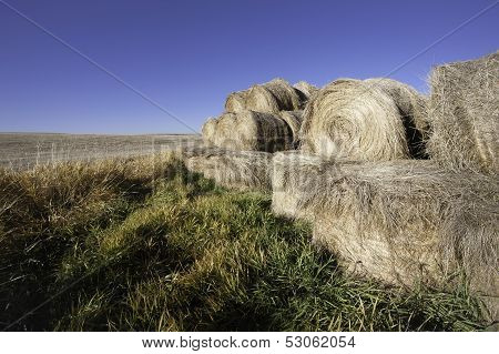 Hay Bundles By The Field.
