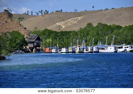 Boats at Komodo National Park