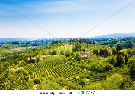 Traditional Toscana Italy Landscape