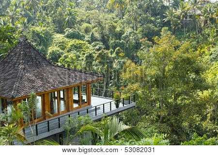 Resort In Rainforest