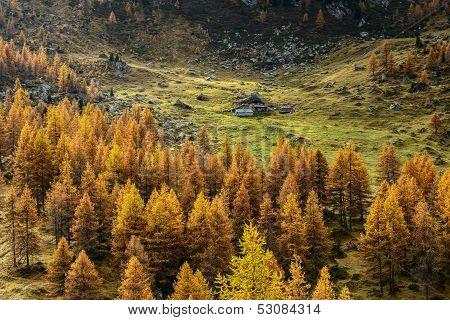 Hut In Autumn (north Italy)
