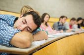 Male sleeping with students sitting in the college lecture hall