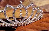 stock photo of tiara  - Imitation diamond tiara on bed of fallen leaves - JPG