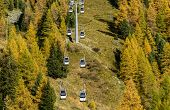 picture of ropeway  - Ropeway and larches in autumn on Mount Sarezza Cuneaz  - JPG