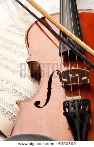 Violin And Rose