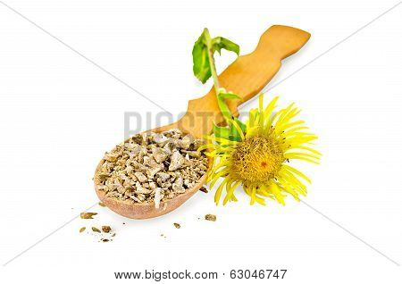 Elecampane Root On A Spoon With Flower
