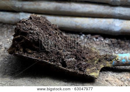 Closeup Of Cow Manure With Shovel