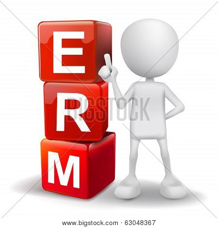 3D Illustration Of Person With Word Erm Cubes