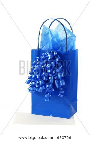 Gift Bag With Tissue Paper And Ribbon
