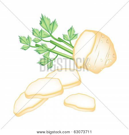 Fresh Slice Celery Root On White Background