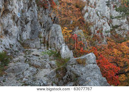 Tasnei Gorge