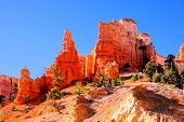 foto of hoodoo  - Orange hoodoos of Bryce Canyon National Park - JPG