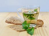 stock photo of nettle  - Stinging nettle and fresh nettle tea in glass mug - JPG