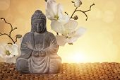 picture of ayurveda  - Buddha in meditation - JPG