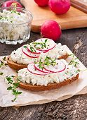 pic of radish  - Sandwich with cottage cheese - JPG
