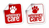 image of veterinary  - Veterinary care stickers - JPG
