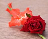 stock photo of gladiolus  - Gladiolus flower with rose on wooden surface - JPG