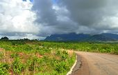 Road In Mountains. The Cloudy Sky. Africa, Mozambique.