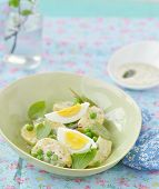 pic of sorrel  - spring potato salad with sorrel green pea and eggs - JPG
