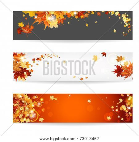 Set of banners with maple leaves. Copy space.