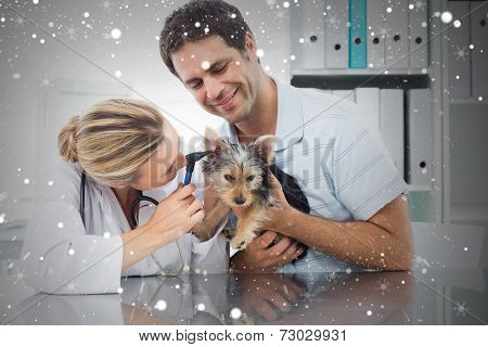 Composite image of veterinarian examining ear of puppy against snow
