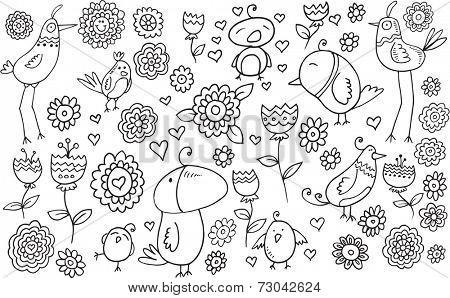 Flower Bird Doodle Illustration Set