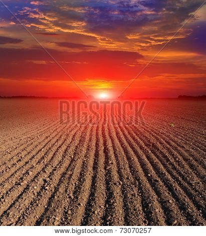 hot sunset over plugged field