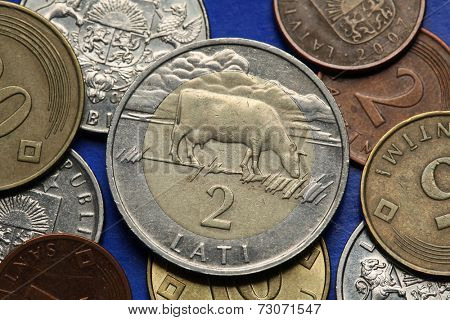 Coins of Latvia. A cow symbolised Latvian countryside depicted in old Latvian two lats coin.