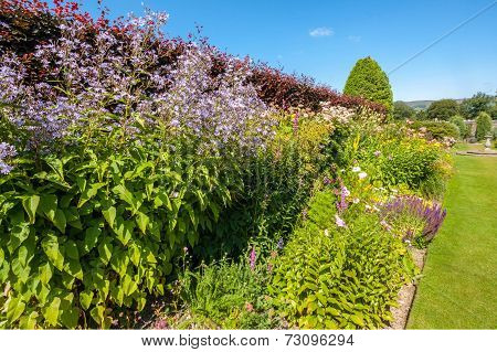 Beautiful Landscaped Summer Garden
