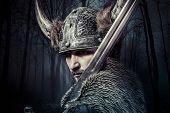 picture of viking  - Sword - JPG